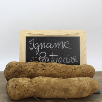 Igname portugaise