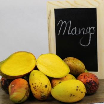 Bassignac (mangot)