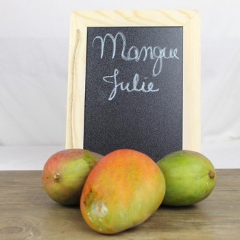 Mangue Julie bio
