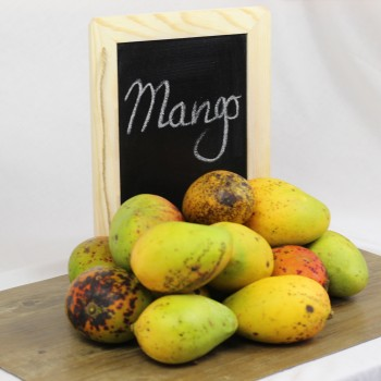 Bassignac bio (mangot)