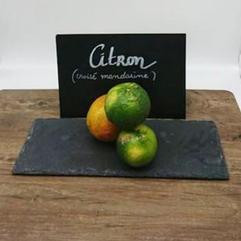 Citron (variété croisé...