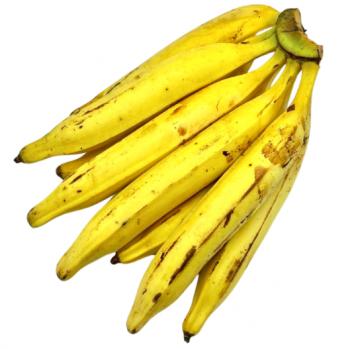 Banane plantain bio