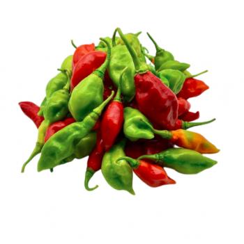 Piment végétarien (bio)
