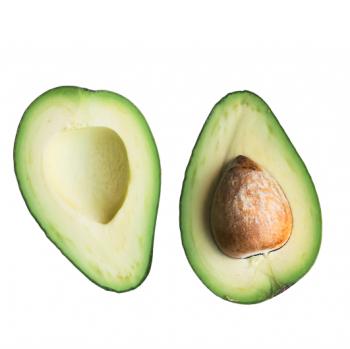 Avocat (bio)