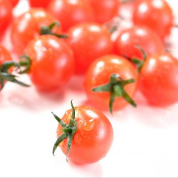 Tomate cerise bio 250g